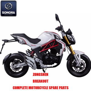 Zongshen Breakout Complete Engine Body Kit Spare Parts Original Spare Parts