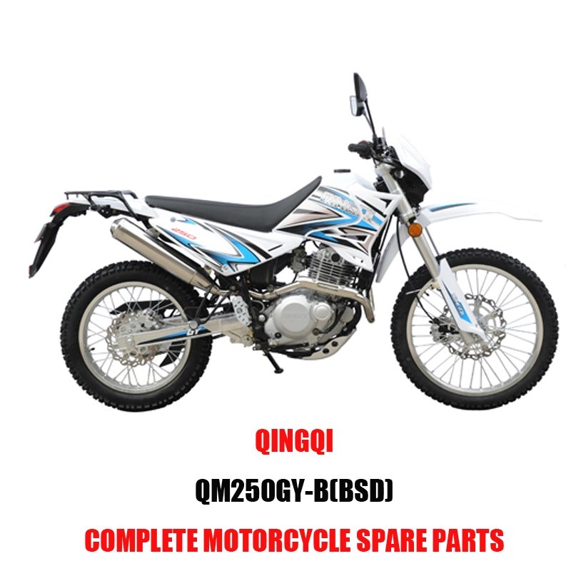 QINGQI QM250GY-B BSD Engine Parts Motorcycle Body Kits Spare Parts Original