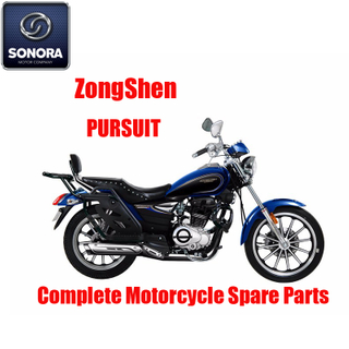 Zongshen Pursuit Complete Engine Body Kit Spare Parts Original Spare Parts