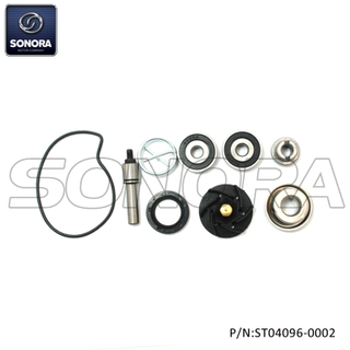 Piaggio,Gilera250-300,X789 Vespa Gts Eu3 Mp3 Oregon 06-08 Evo ie Beverly Nexus Eu3 06-09 Camaby Cruiser 09 Water pump repair kit(P/N:ST04096-0002) Top Quality